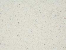 Vanilla Quartz Laminate